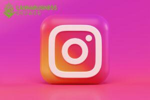 Instagram as a 420 Social Network