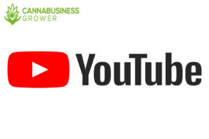 YouTube for Cannabis Business